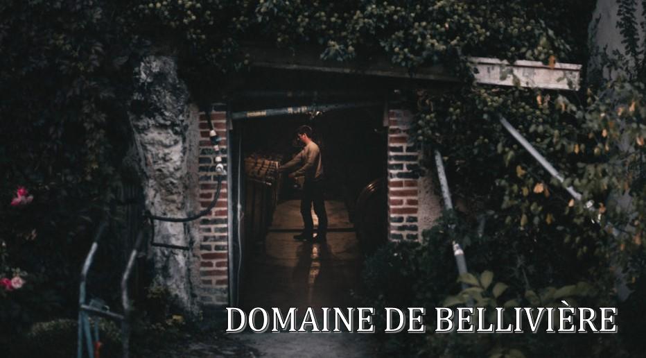 Domaine de Bellivière