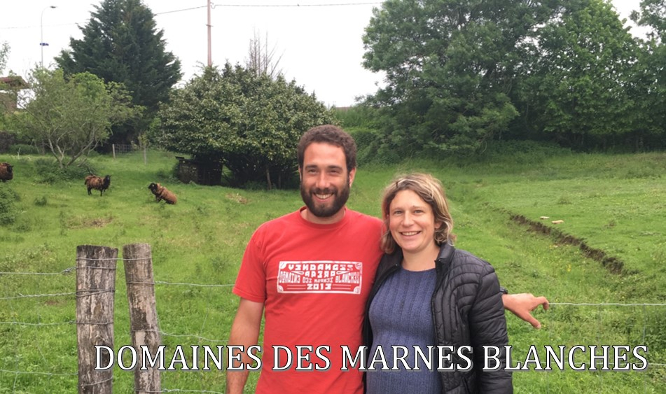 Domaine des Marnes Blanches